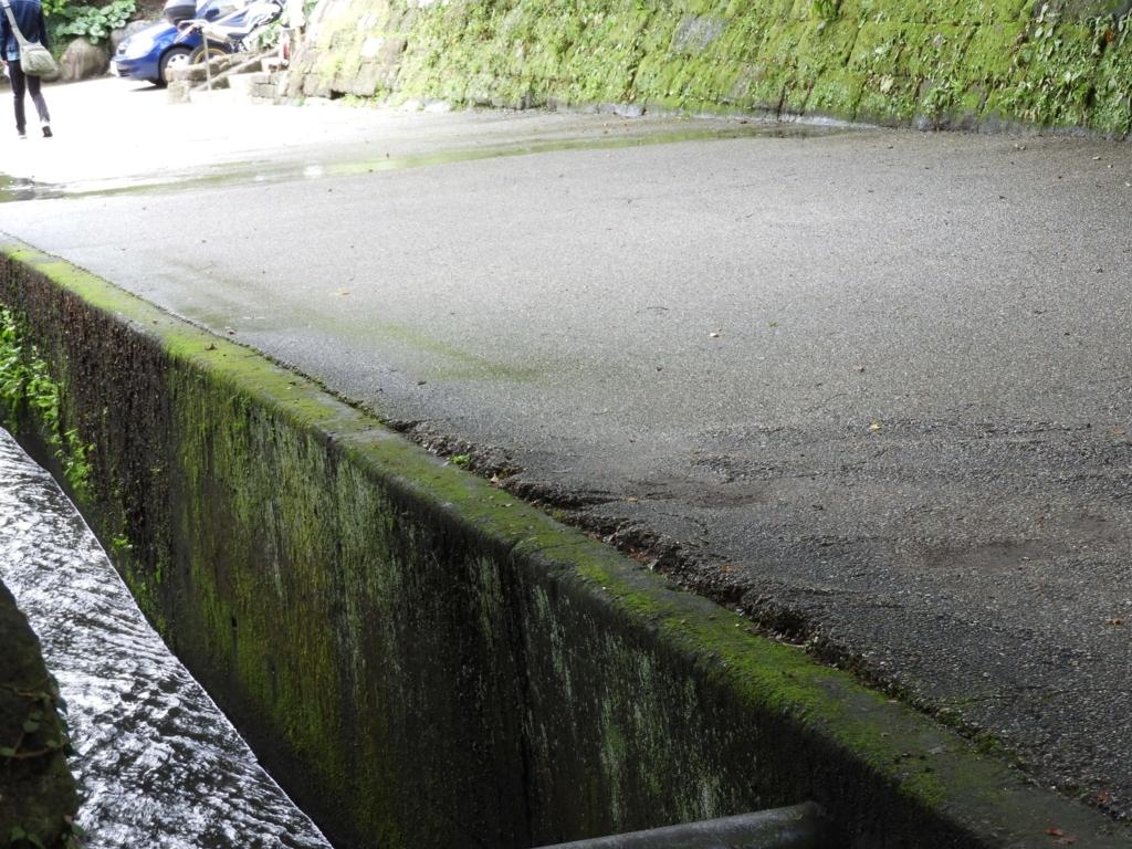 方丈横の水路