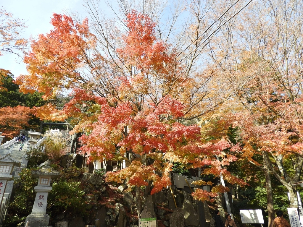 大山阿夫利神社の紅葉