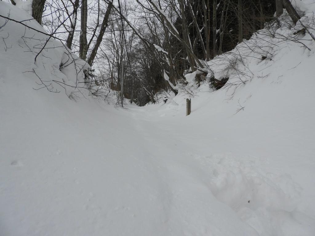 雪に埋まった神道