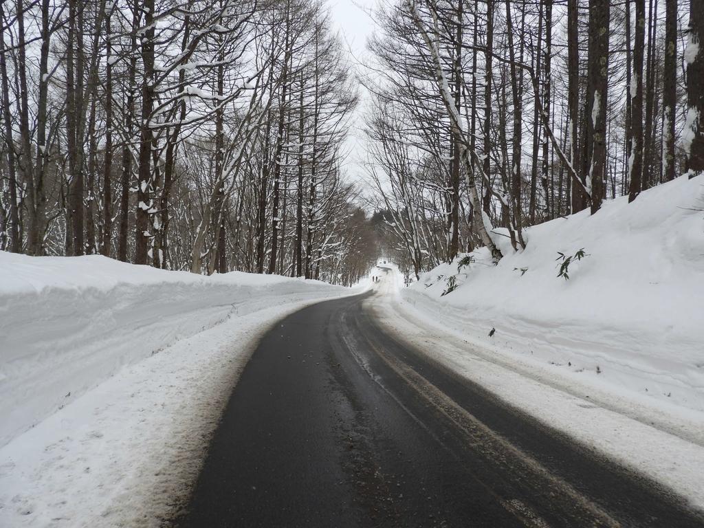 奥社へ向かう車道