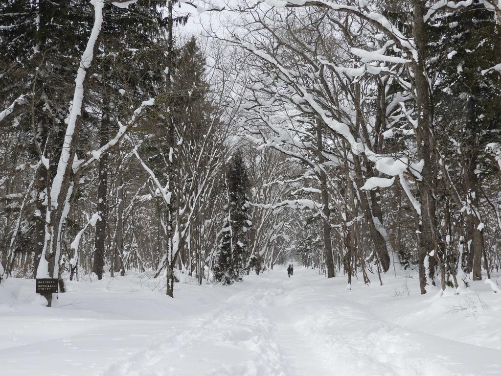 分厚い積雪に覆われた参道
