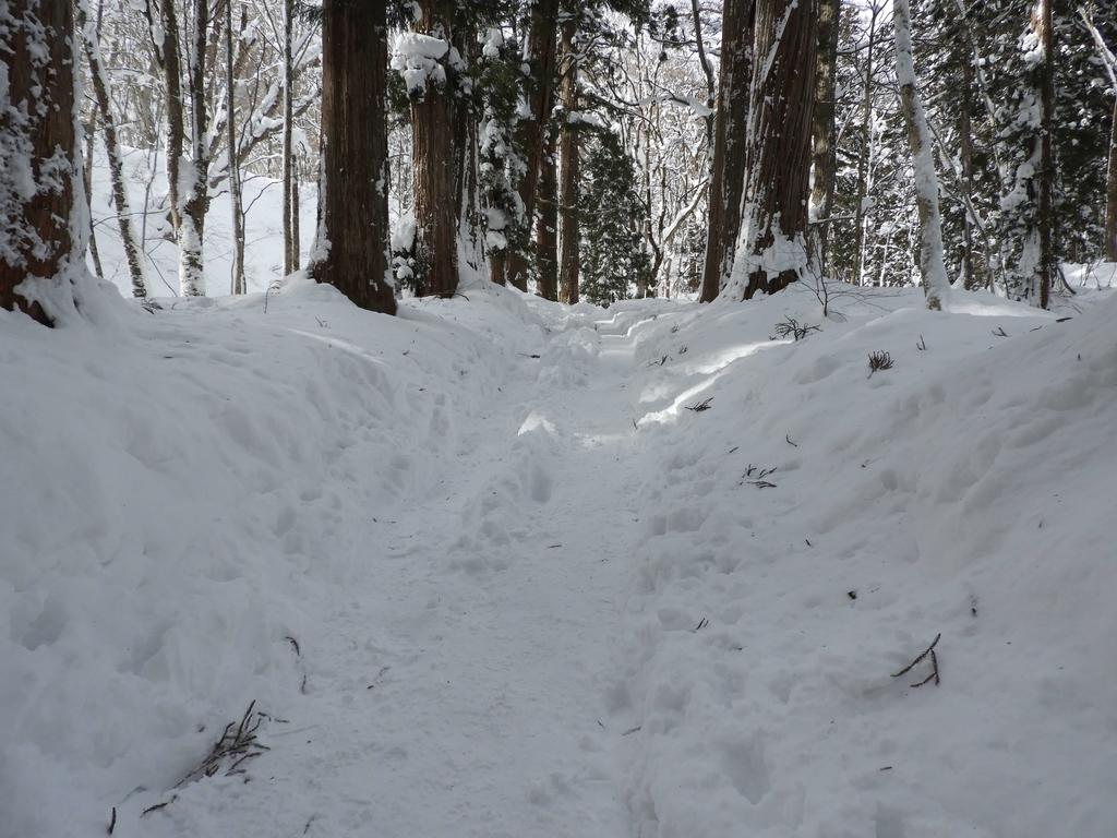 雪に埋まった石段