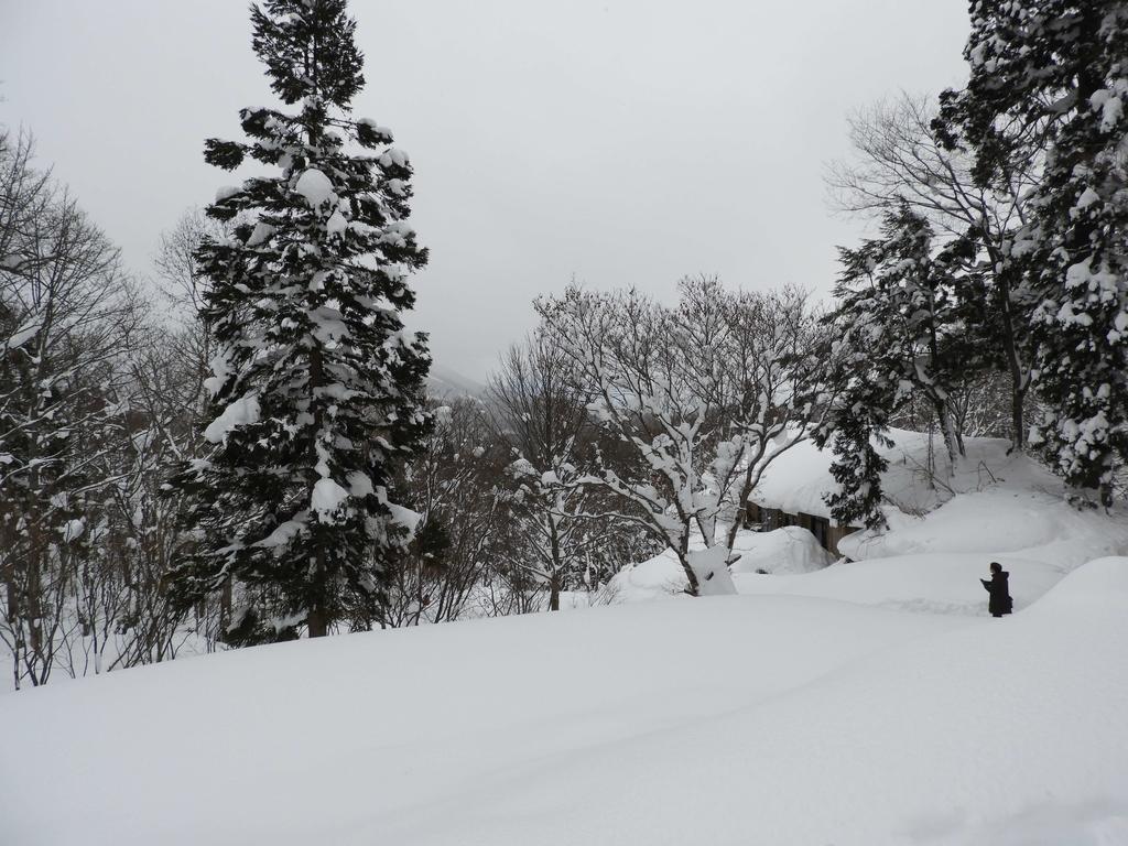 奥社周辺の光景