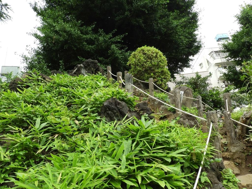富士塚の中腹