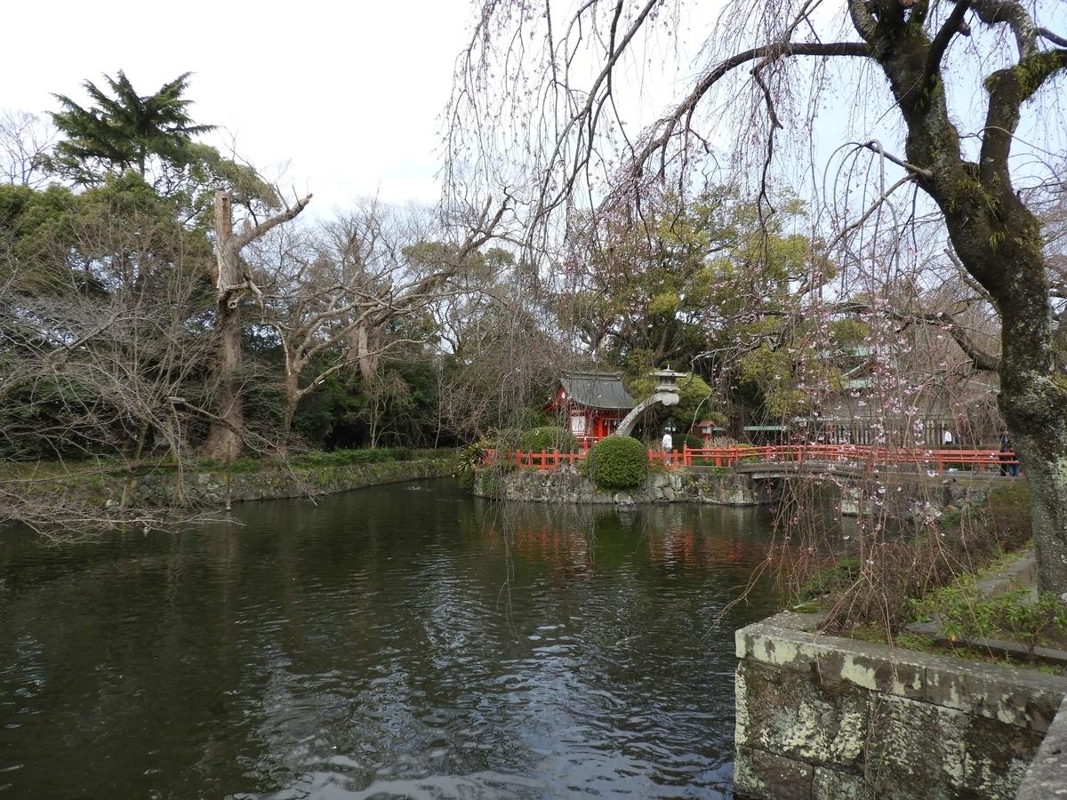 中央に島がある三嶋大社の神池