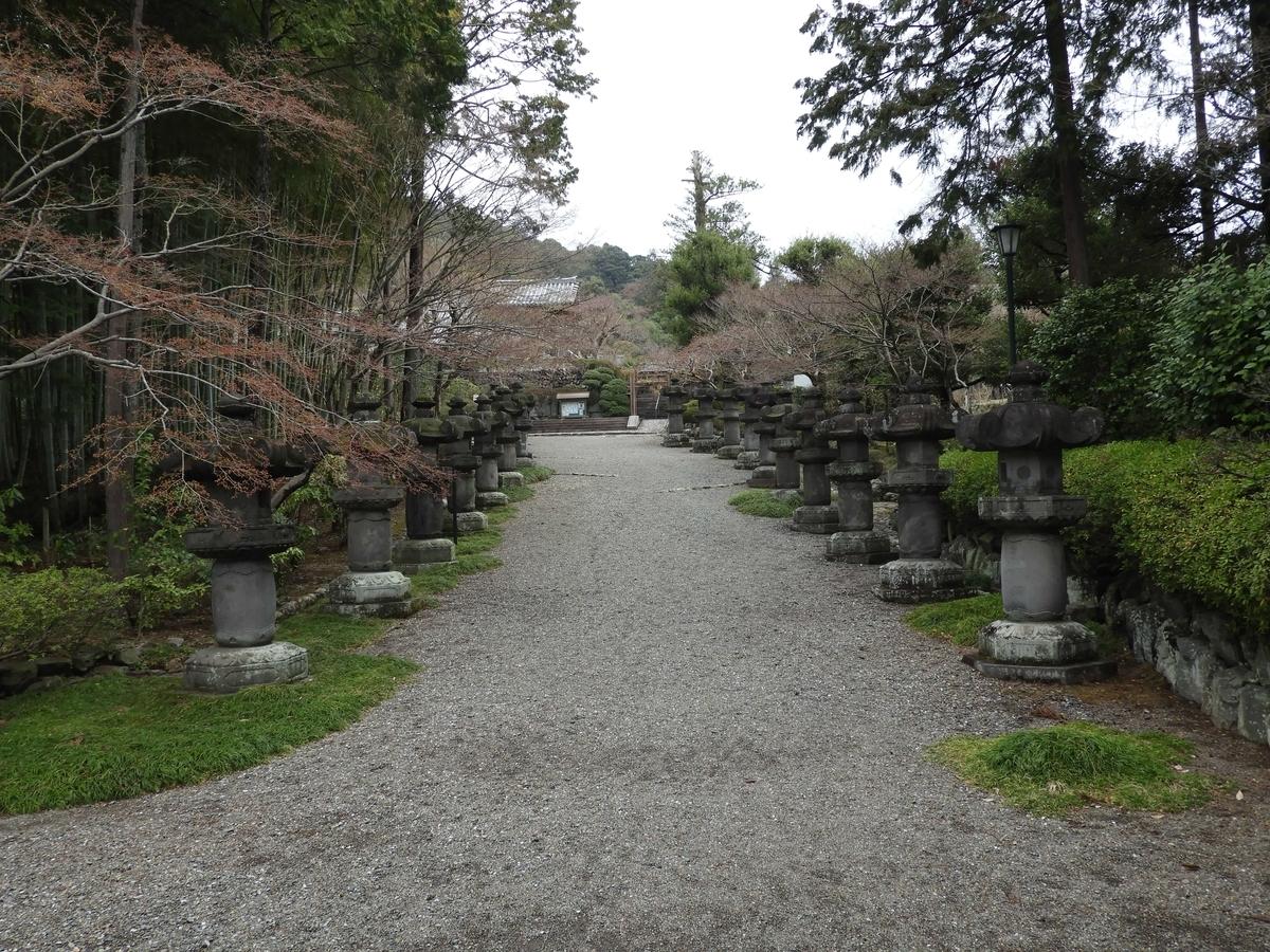 石燈籠の間を延びる参道