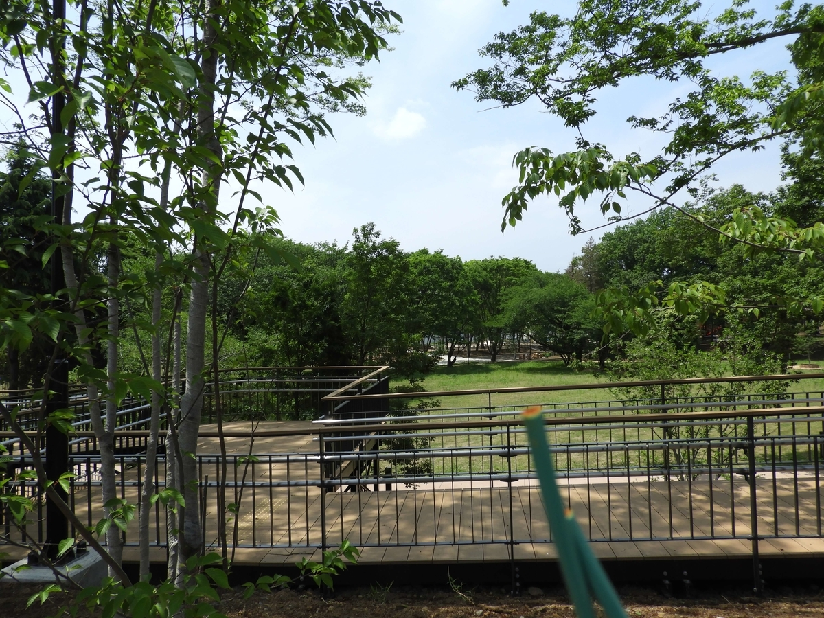 鶴間公園内