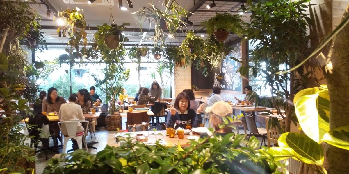 ジャングルを思わせるレストラン