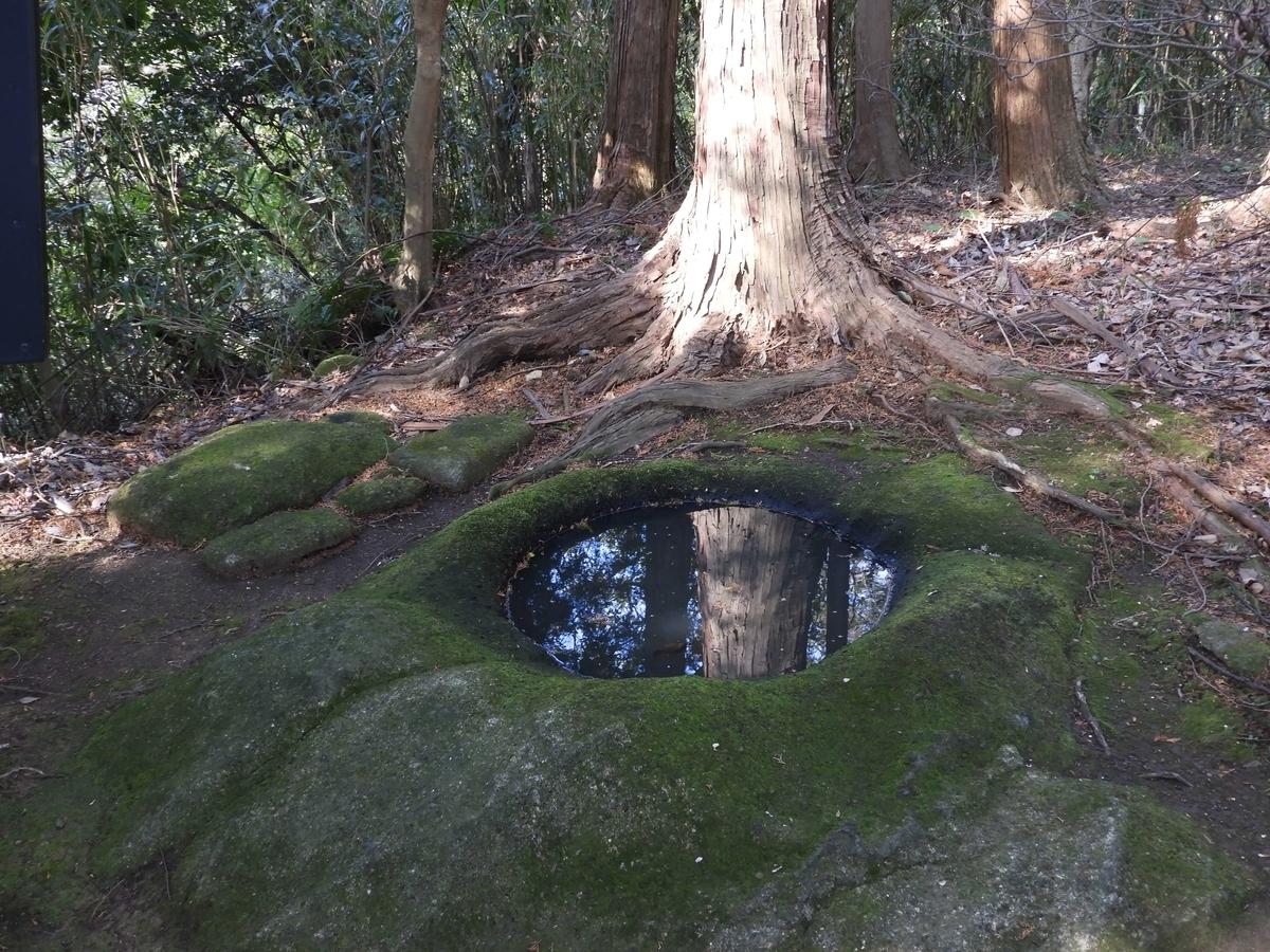 大木の根元に湧く弘法井