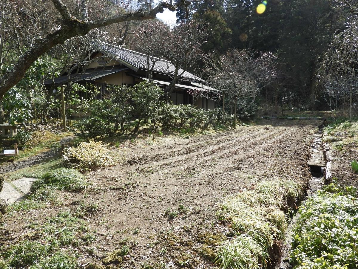 茶室と菖蒲畑