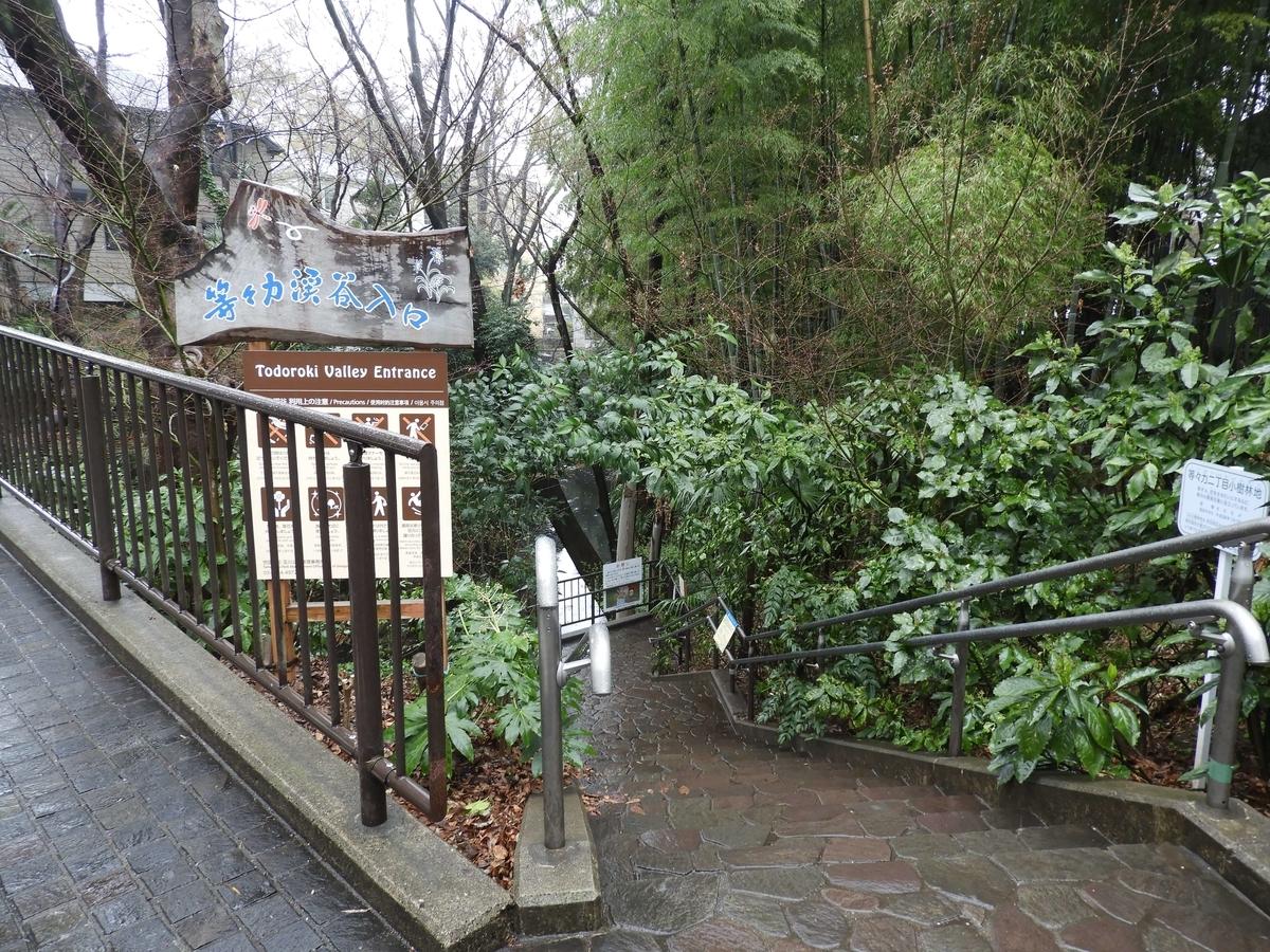 渓谷の入口