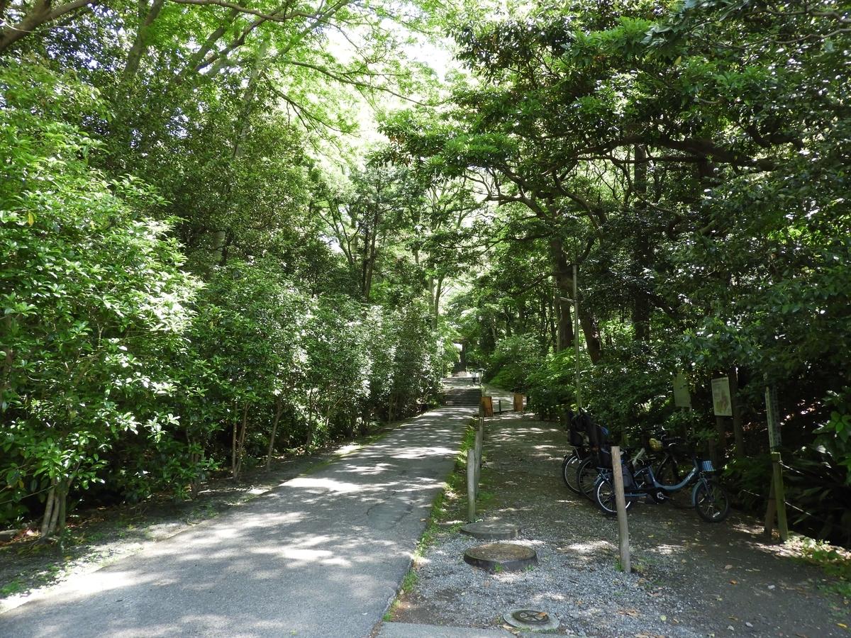 鎌倉時代の森