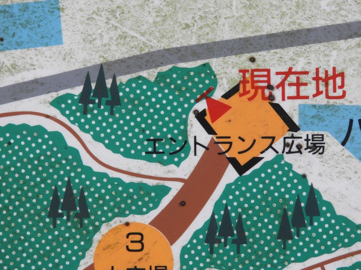 正確な地図