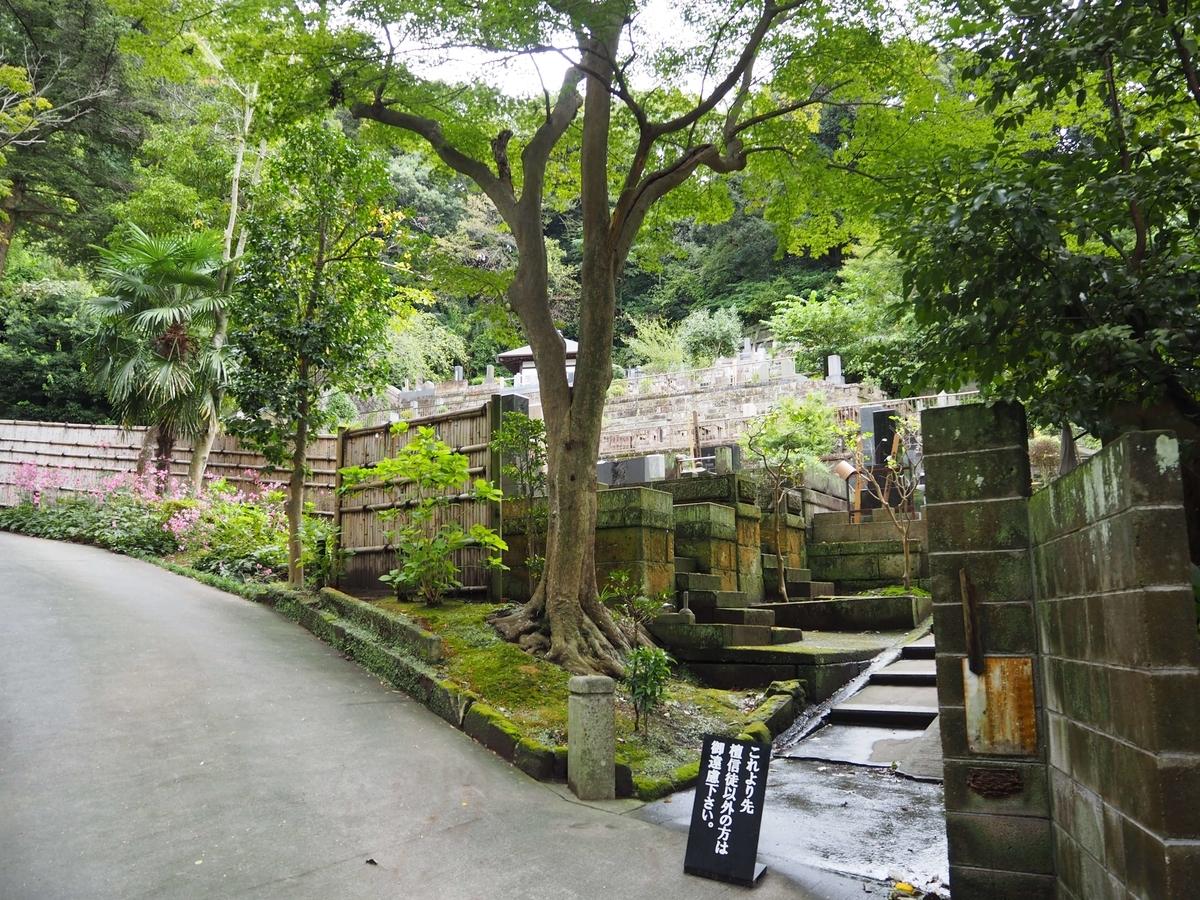 円覚寺境内の緑に包まれた中に位置する墓地