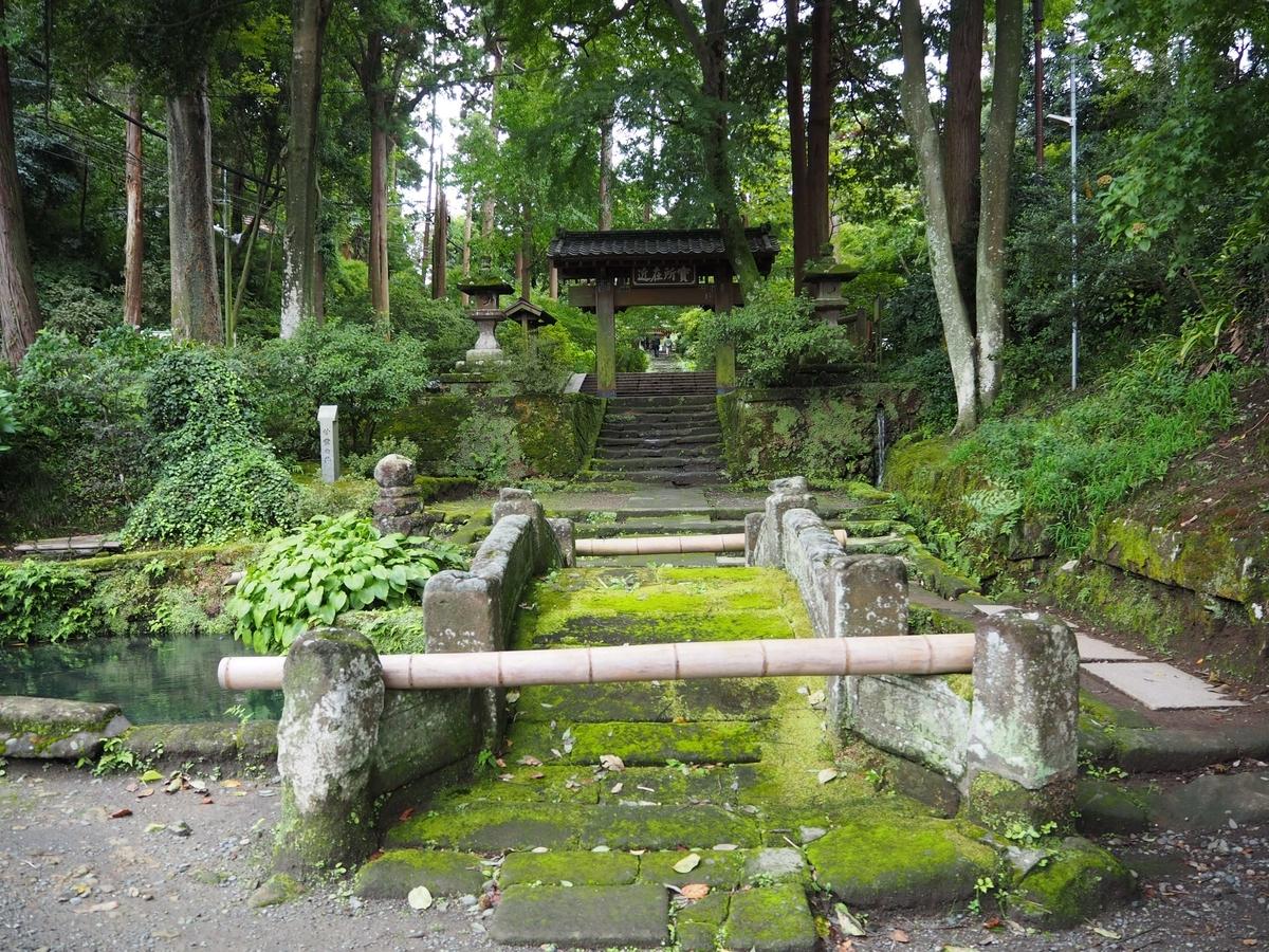 うっそうとした緑の中の山門。手前に石橋がある。