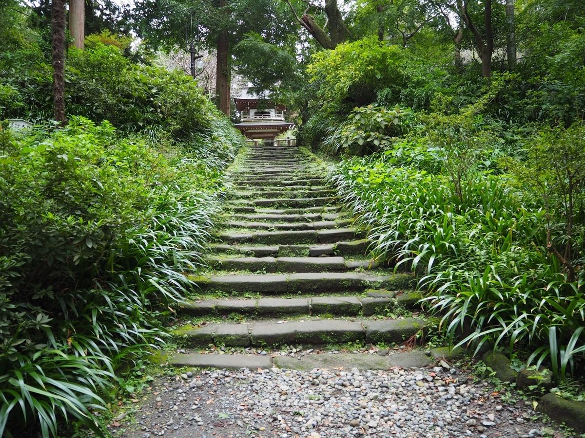 山門から鐘楼門まで続く石段