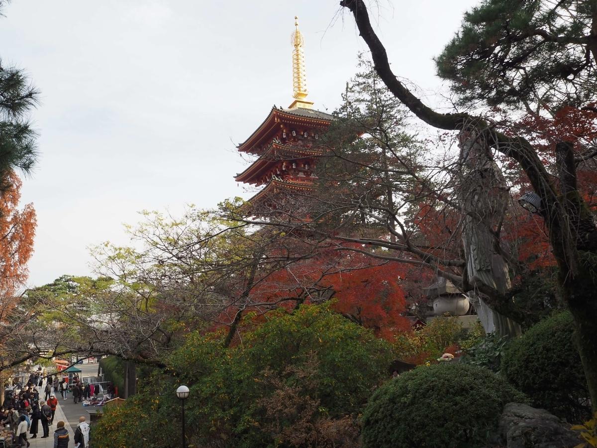 高幡不動尊の紅葉と五重塔