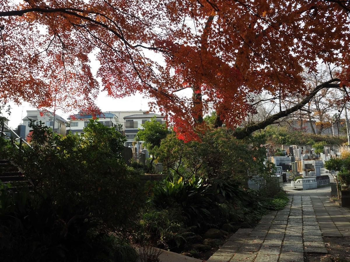 紅葉が美しい墓地