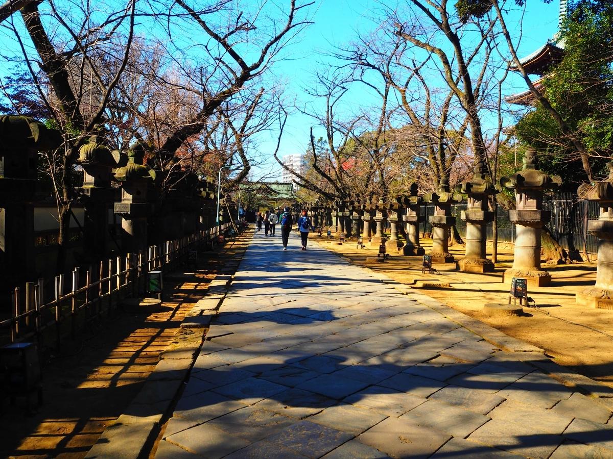 参道の両側に並ぶ上野東照宮の石灯篭