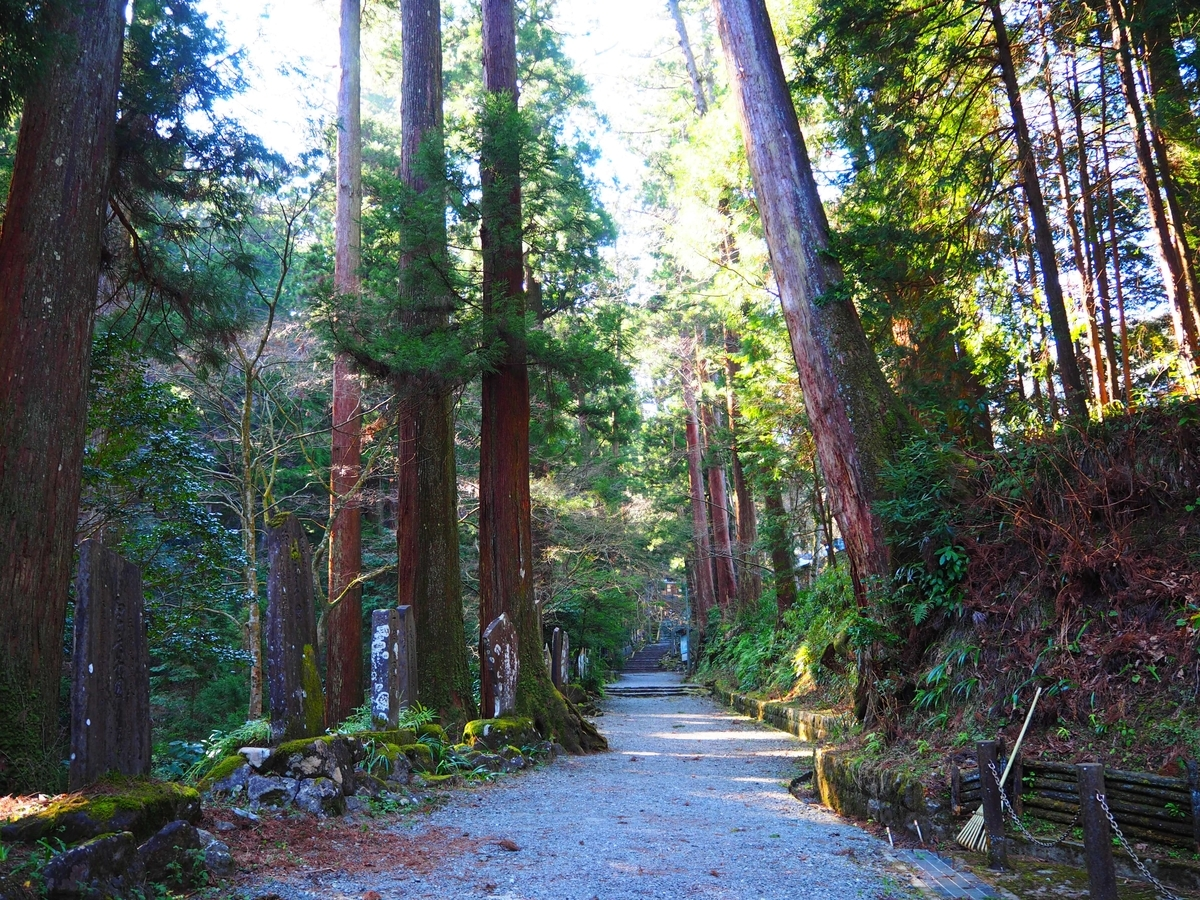 霊気に満ちていた大雄山最乗寺の参道