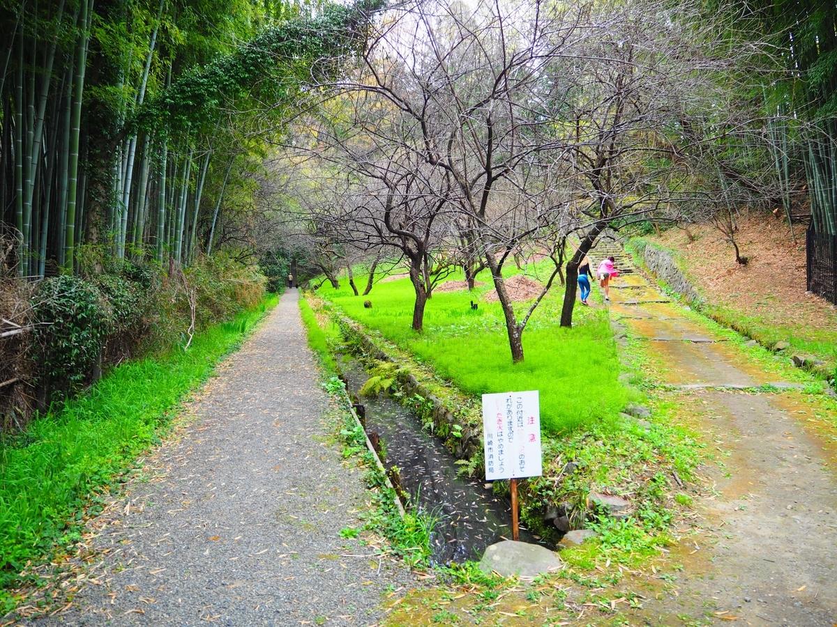 王禅寺の参道の分岐点