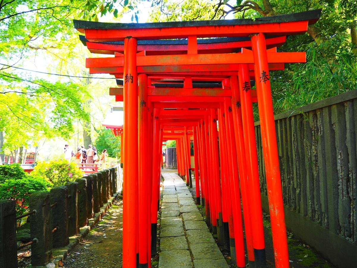 乙女稲荷神社の千本鳥居出口