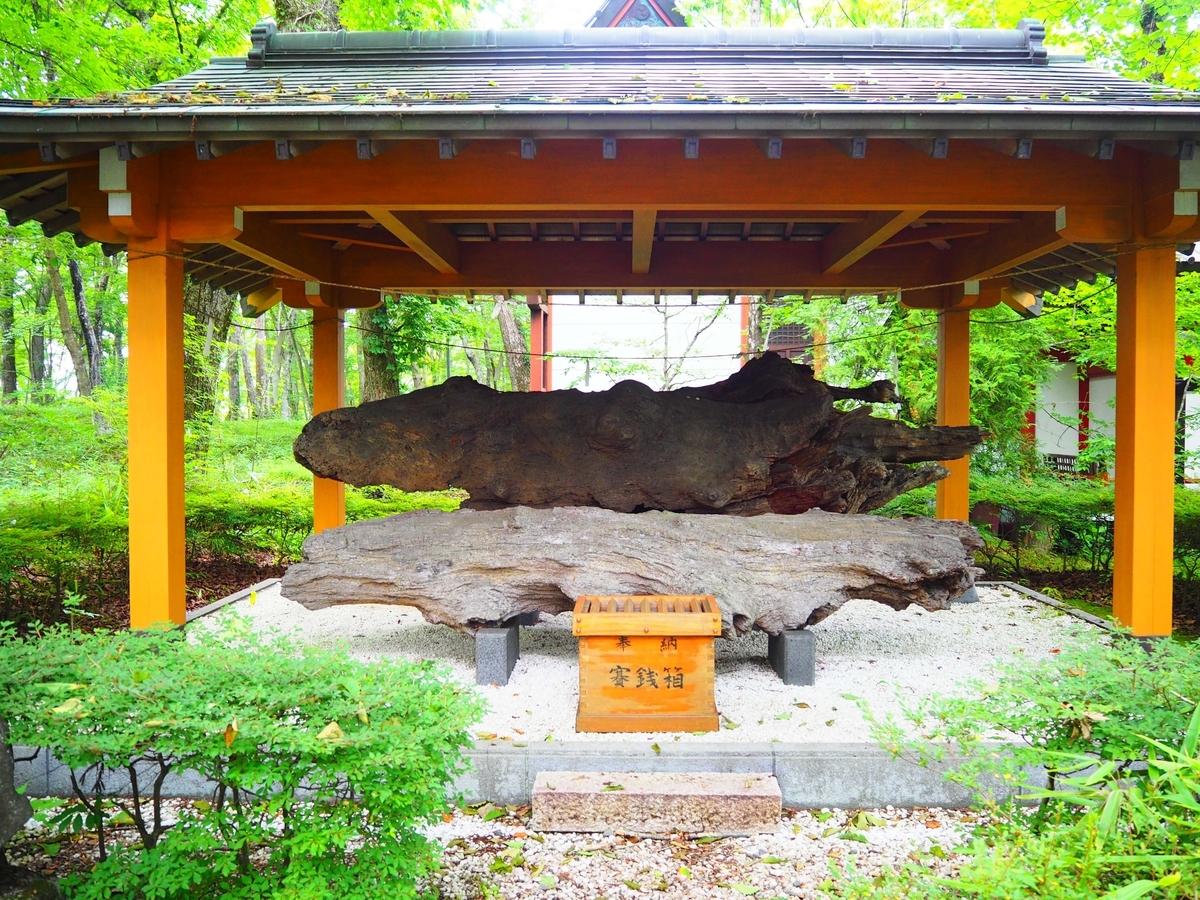山中諏訪神社の旧御神木