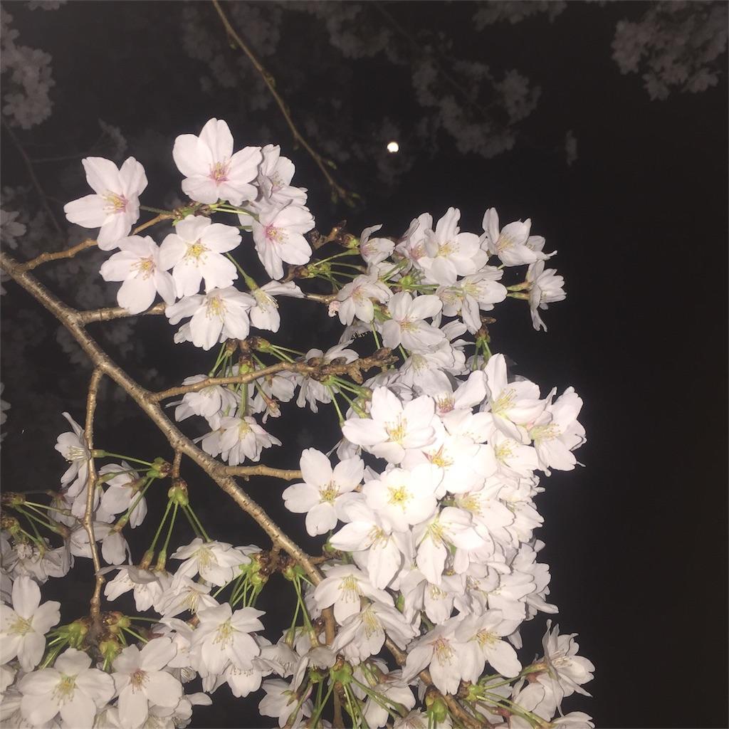 f:id:minamimoto0613:20180327202441j:image