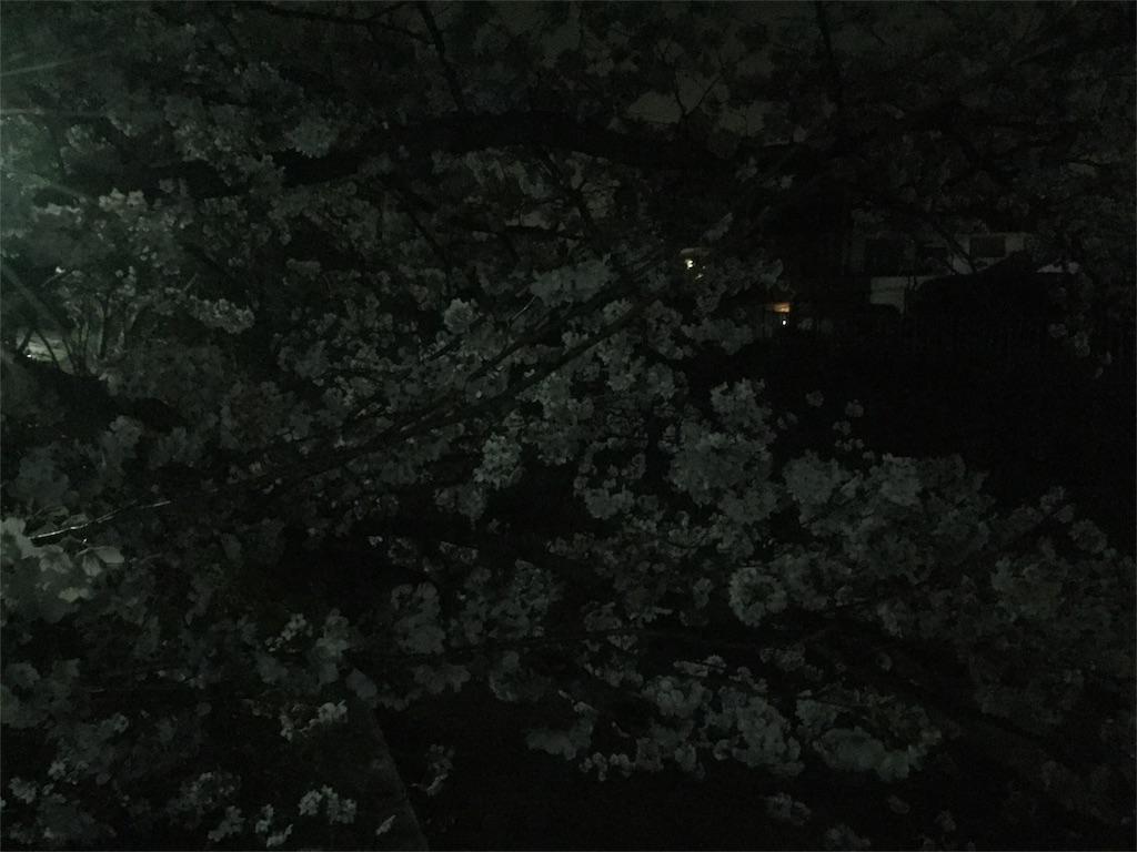 f:id:minamimoto0613:20180327202613j:image