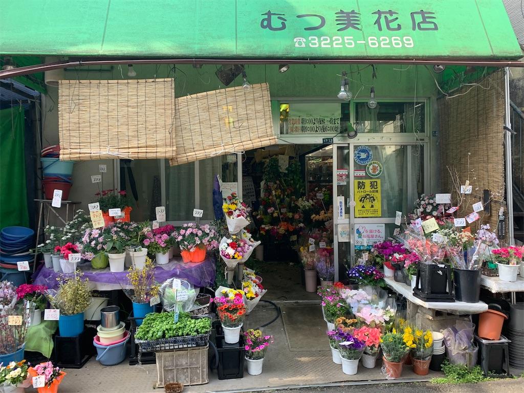 f:id:minaminoshima37:20200304133232j:image
