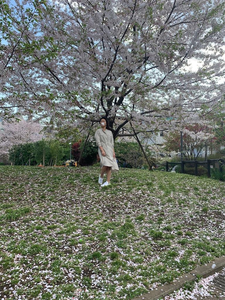 f:id:minaminoshima37:20200412144524j:image