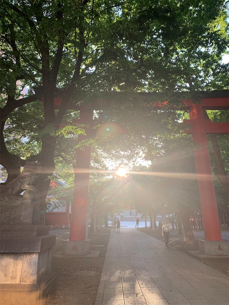 f:id:minaminoshima37:20200528172009j:image