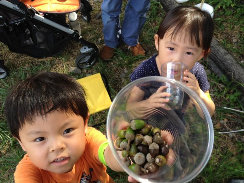 f:id:minamonohatake:20120902152045j:image:w360