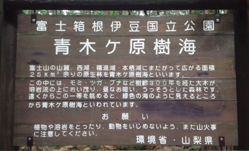 f:id:minamotosuiso:20160816144828j:plain