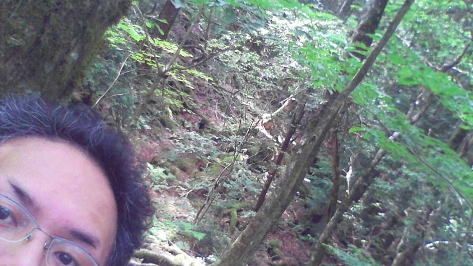 f:id:minamotosuiso:20160816145205j:plain
