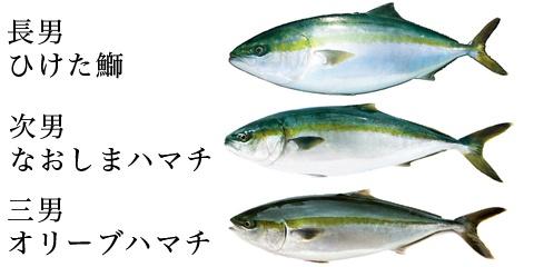 f:id:minato-daizo:20181115090407p:plain