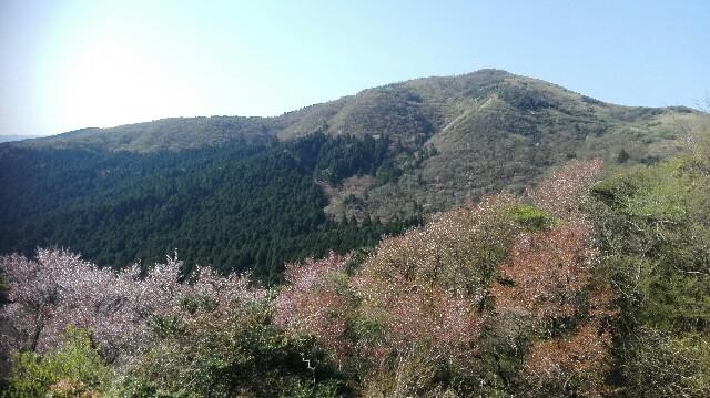 f:id:minatoyokohama303:20170501154318j:image