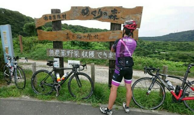 f:id:minatoyokohama303:20170827161746j:image