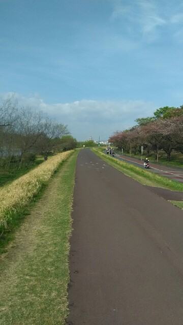 f:id:minatoyokohama303:20180406094333j:image
