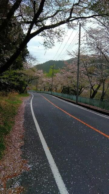 f:id:minatoyokohama303:20180406110604j:image