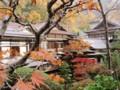 紅葉の中庭より全景。中央奥が宿泊した百合の間。