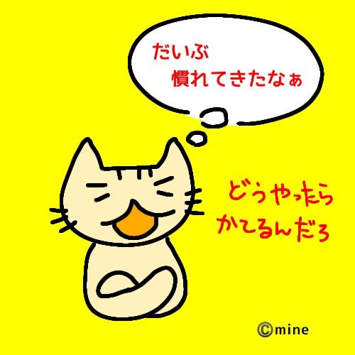 f:id:mineko777:20200427211342j:plain