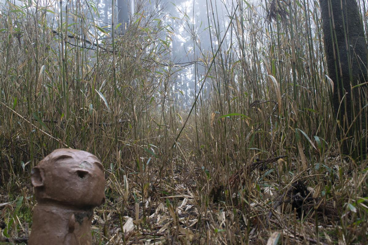 森の中でお地蔵様?木霊?を発見。可愛い