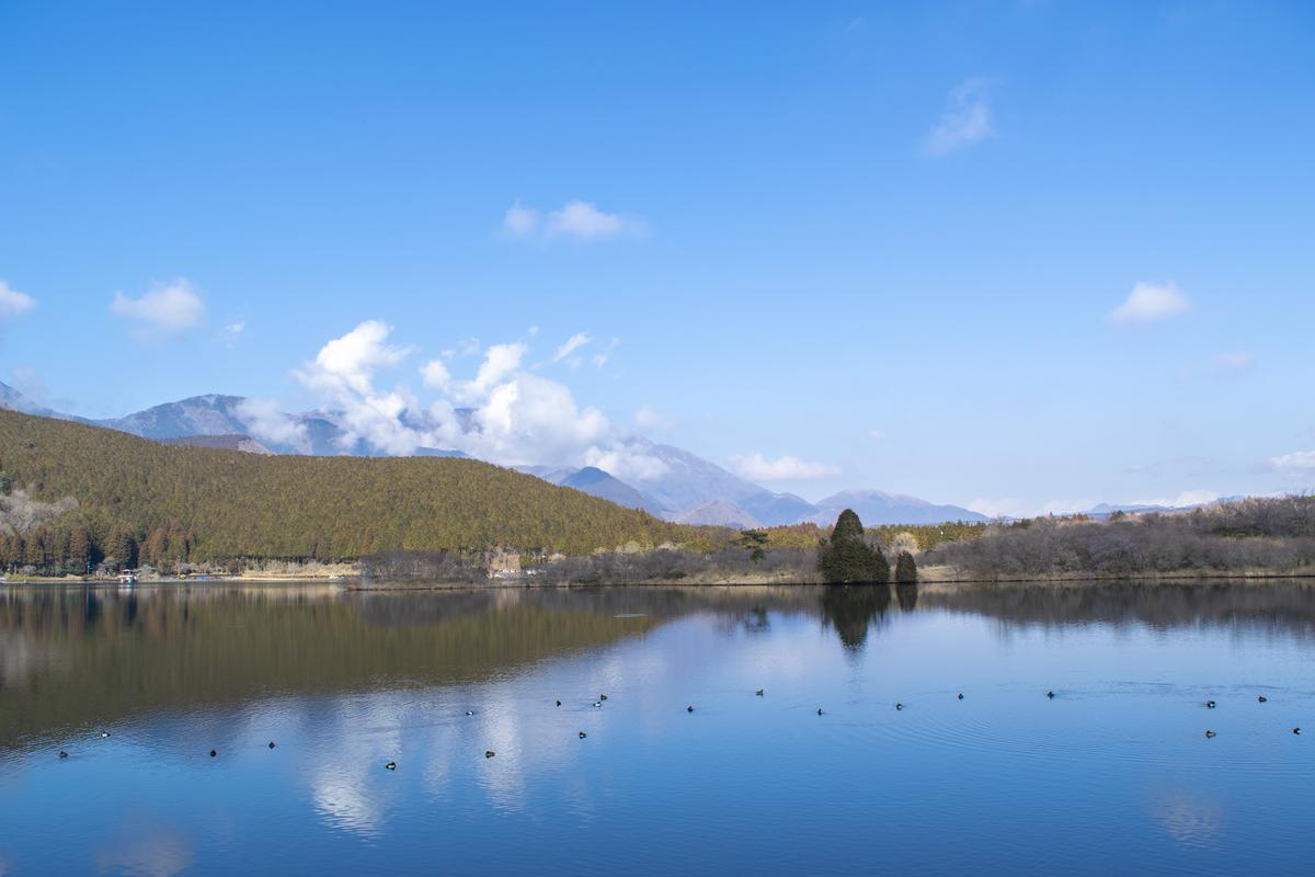 清々しい田貫湖