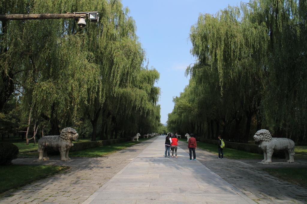 f:id:minghuabj:20190109234510j:plain