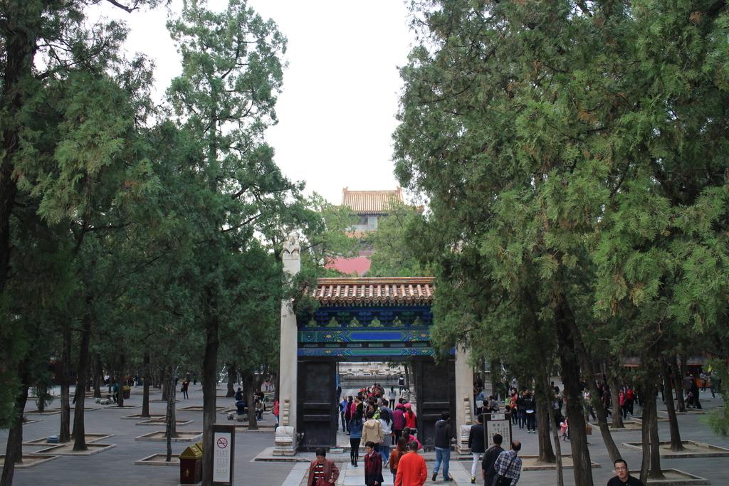 f:id:minghuabj:20190110014106j:plain