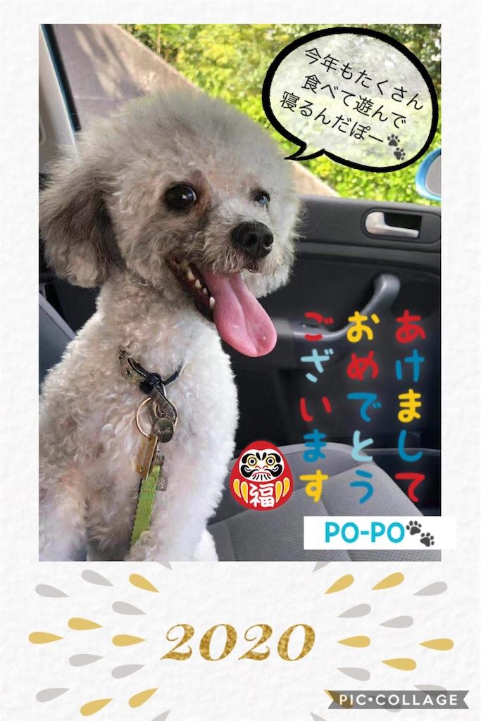 f:id:minghuabj:20200101024824j:image