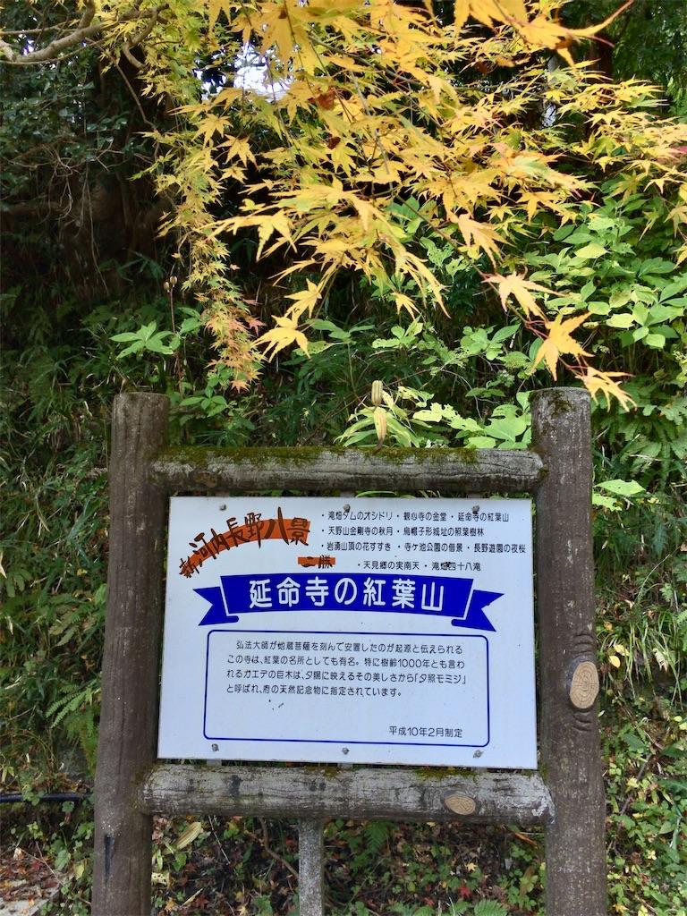 f:id:minghuabj:20201115161514j:image