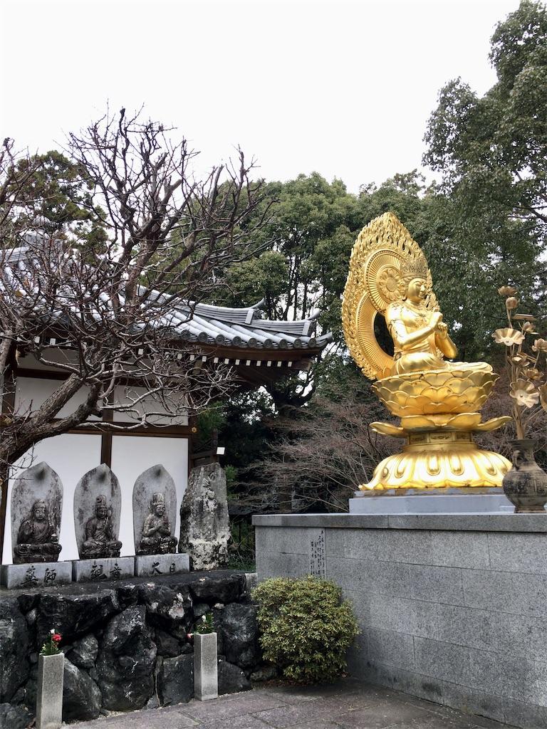 f:id:minghuabj:20201128234143j:image