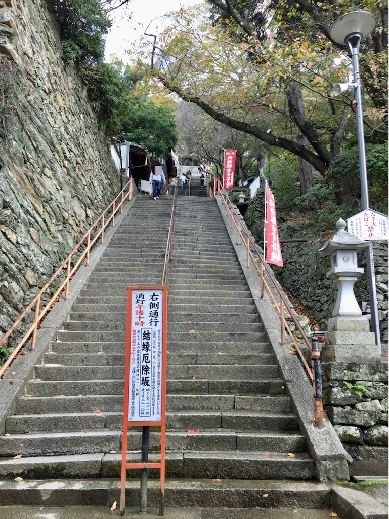 f:id:minghuabj:20201202004916j:image
